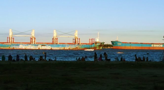 Hidrovía Paraguay-Paraná: donde existe un problema, nace un negocio